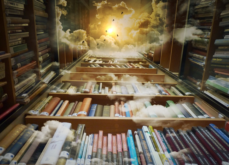 dreamy library
