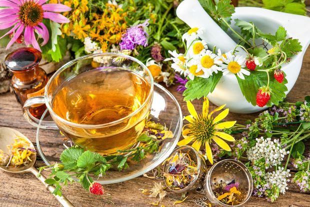 E-Resources on Herbal Wellness and Alternative Medicine
